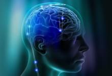 Köşe Yazısı | Hafızamızı Geliştirebilir Miyiz? – Burak Ertürk