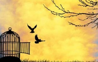 Köşe Yazısı | İfade Özgürlüğü – Sultangül AYYILDIZ
